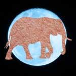 родинка слон хобот в низ