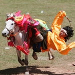 Если наездник не упадет с лошади, его локти останутся целыми и невредимыми