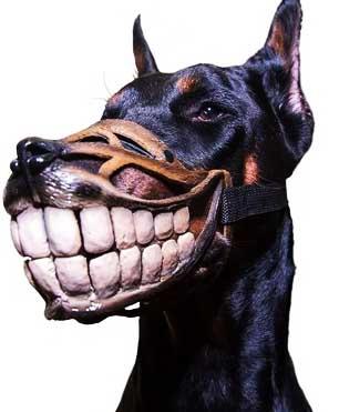 зубы9