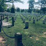 Зеленая трава на кладбище