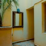 Зеркало возле пальмы