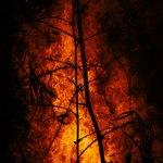 Большой пожар