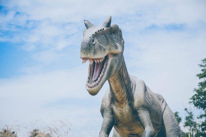 Приснился динозавр с выпавшим зубом