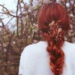 Снятся рыжие волосы