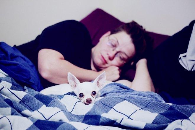 мужчина спит с собакой