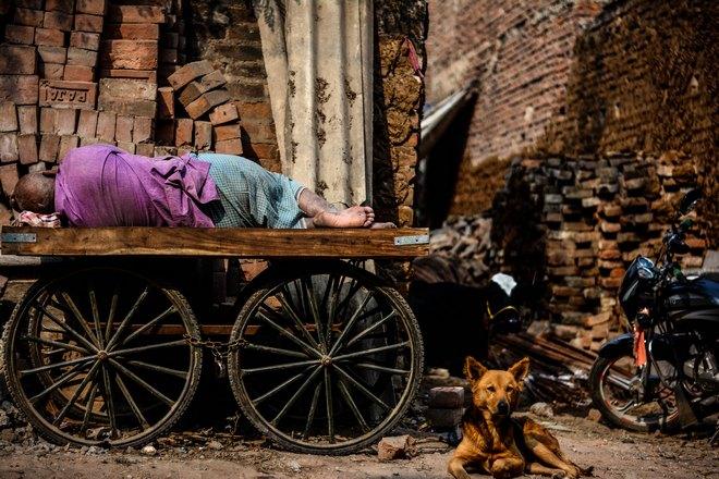 Кто-то спит на повозке