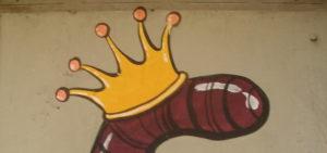 червяк король