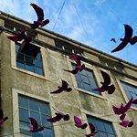 Фигуры птиц необычного цвета