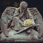 Скульптура ангела с розой на кладбище