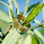 Кольцо в листьях