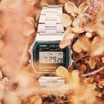 Электронные часы в листьях