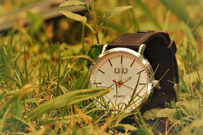 Часы в траве