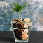Монеты и цветок