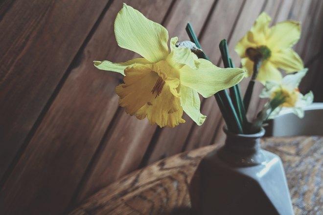 Желтые лилии в вазе на столе