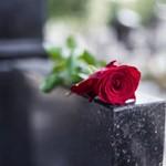 Роза на памятнике