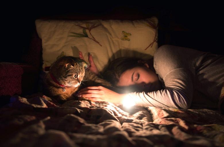 Девушка спит вместе с котом