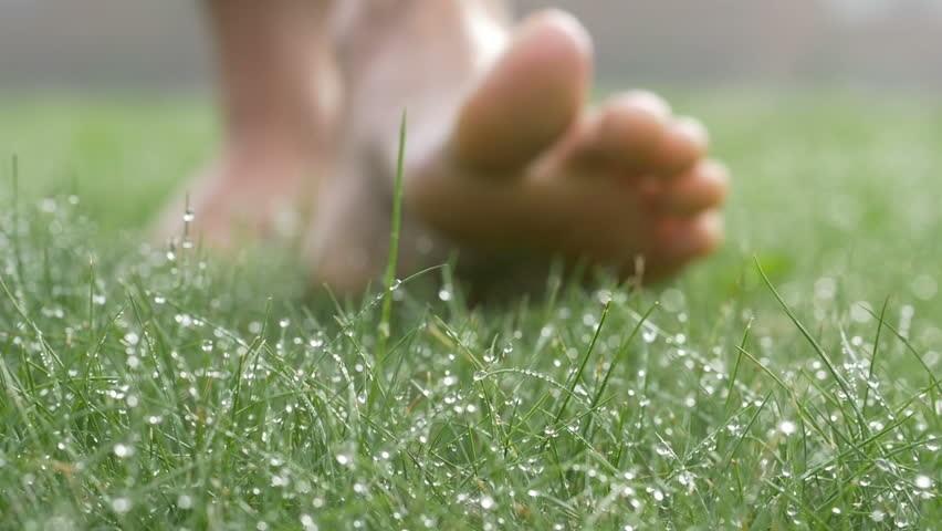 Босиком по мокрой траве