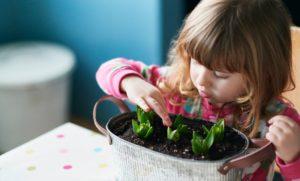 Ребенок сажает растение