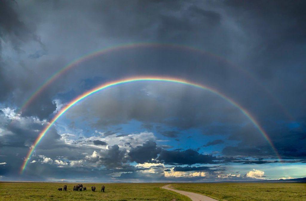 над полем две радуги