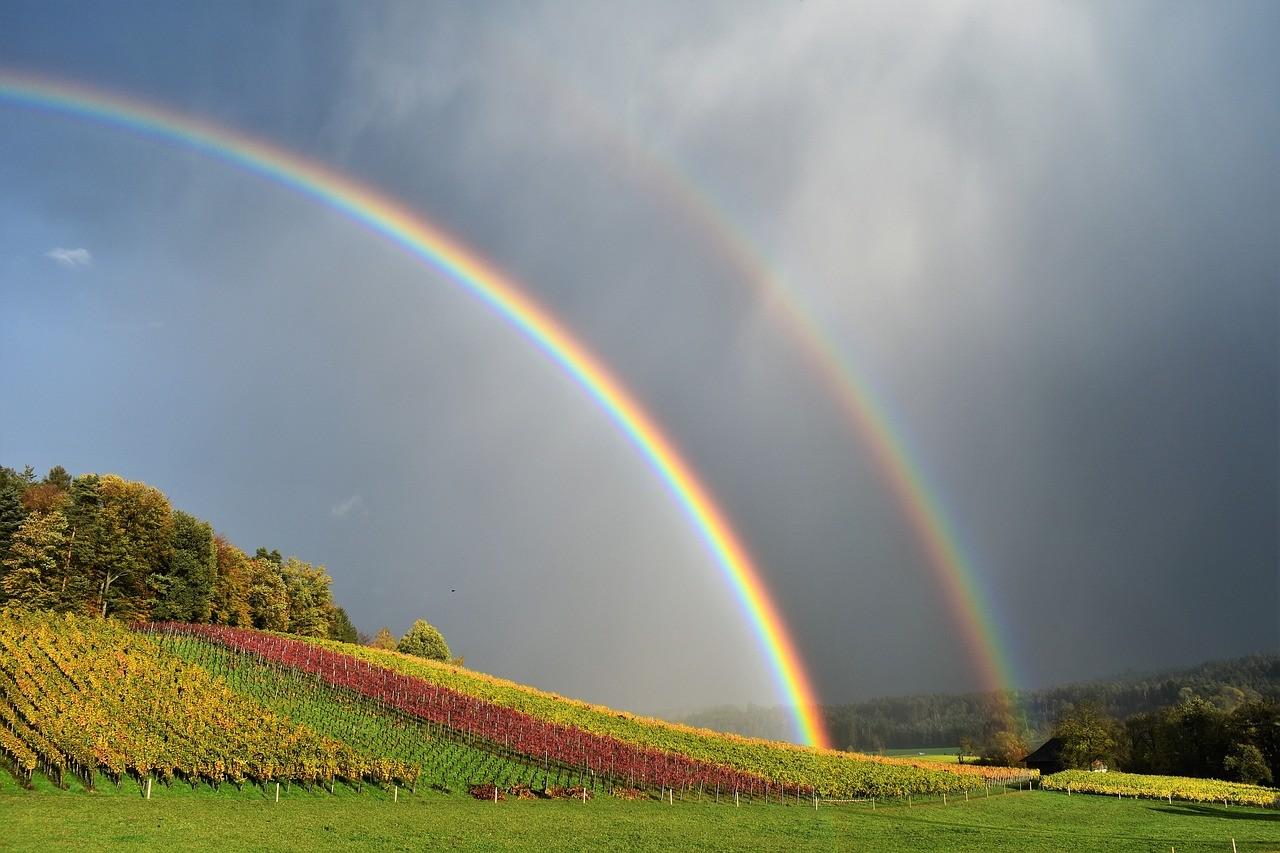радуга над полем