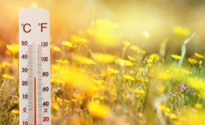 жарко на поле