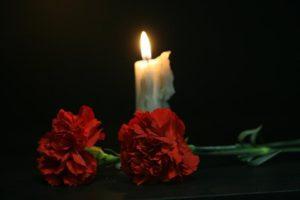 гвоздики на фоне свечи