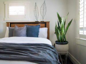 цветок стоит в спальне