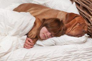 собака спит на подушке с девушкой