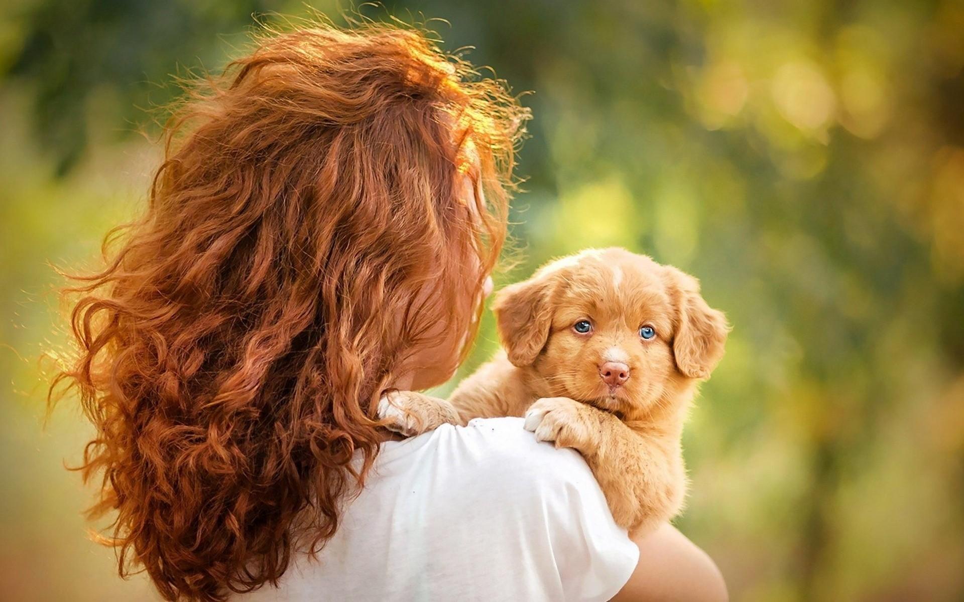 щенок на руках у девушки