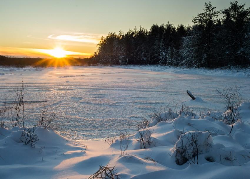 ясный зимний день